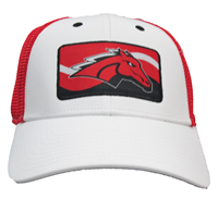 Mustang Horse Hat